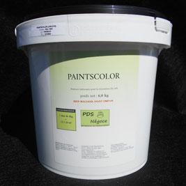 Paintscolor PDS Négoce