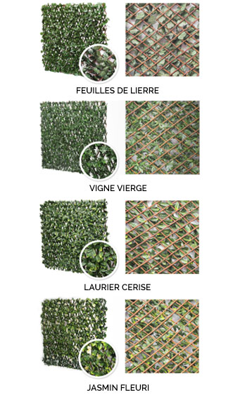 Treillis Fleuri - PDS Négoce